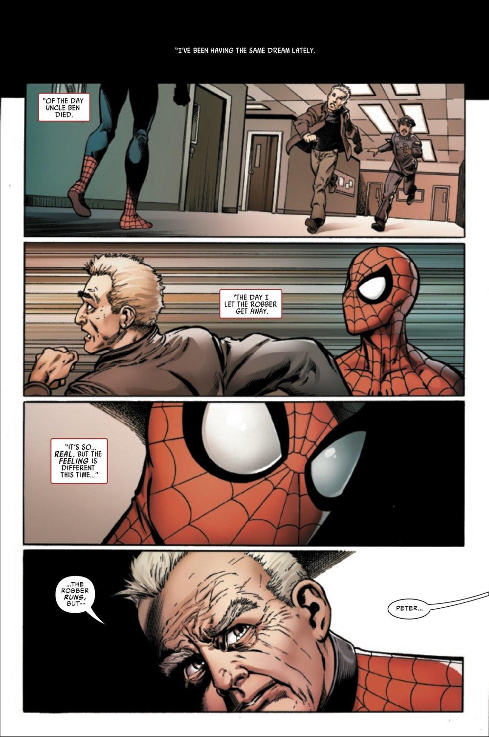 Homem-Aranha História de Vida Resenha 08